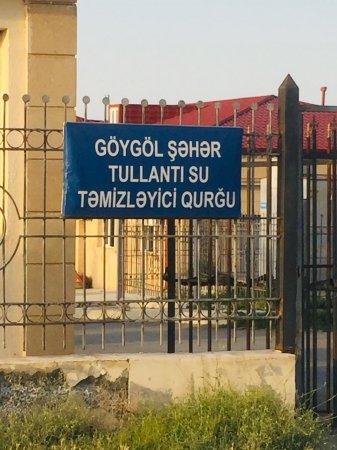 Göugölün natəmiz üzü - İLGİNC MƏLUMAT // FOTO