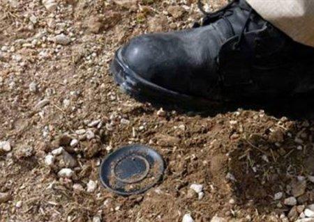 Bir ayda mina partlaması nəticəsində yaralananların sayı AÇIQLANDI